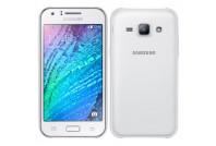 Samsung Galaxy J1 SM-J100 (5)