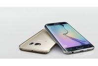 Samsung Galaxy S6 Edge Parts (33)