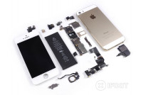 iPhone 5S Parts (42)