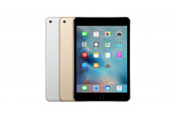 iPad Mini 4 Parts (22)
