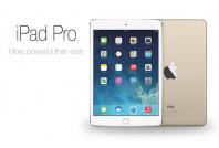 "iPad Pro 9.7"" Parts (19)"